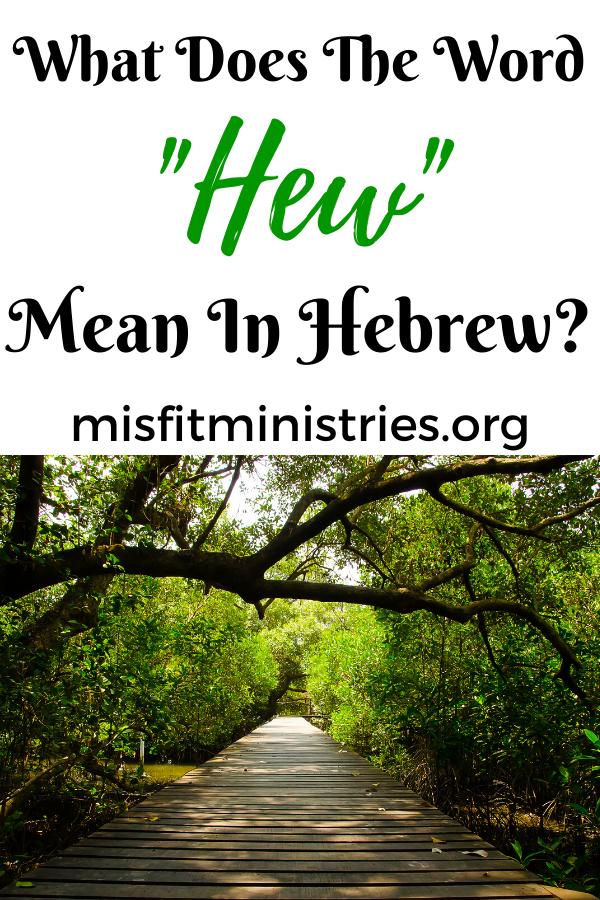 What does the word hew mean in Hebrew?