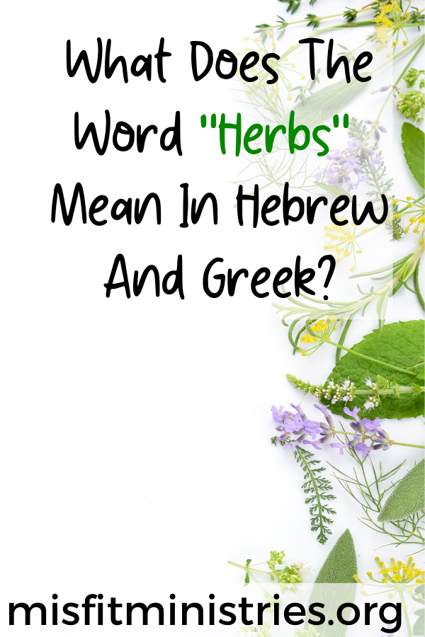 What does the word herbs mean in Hebrew and Greek?