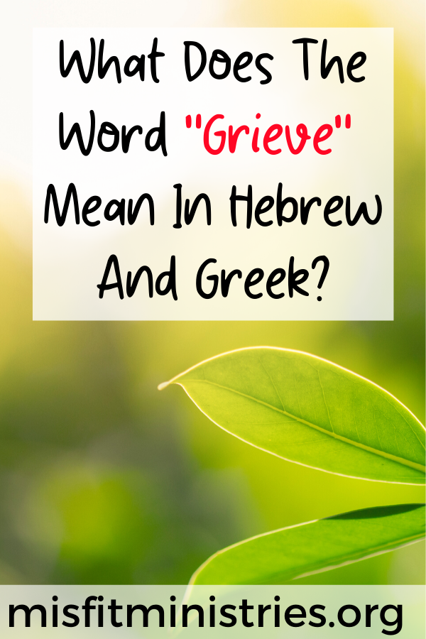 What does the word grieve mean in Hebrew and Greek?