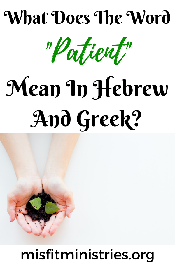 What does the word patient mean in Hebrew and Greek?