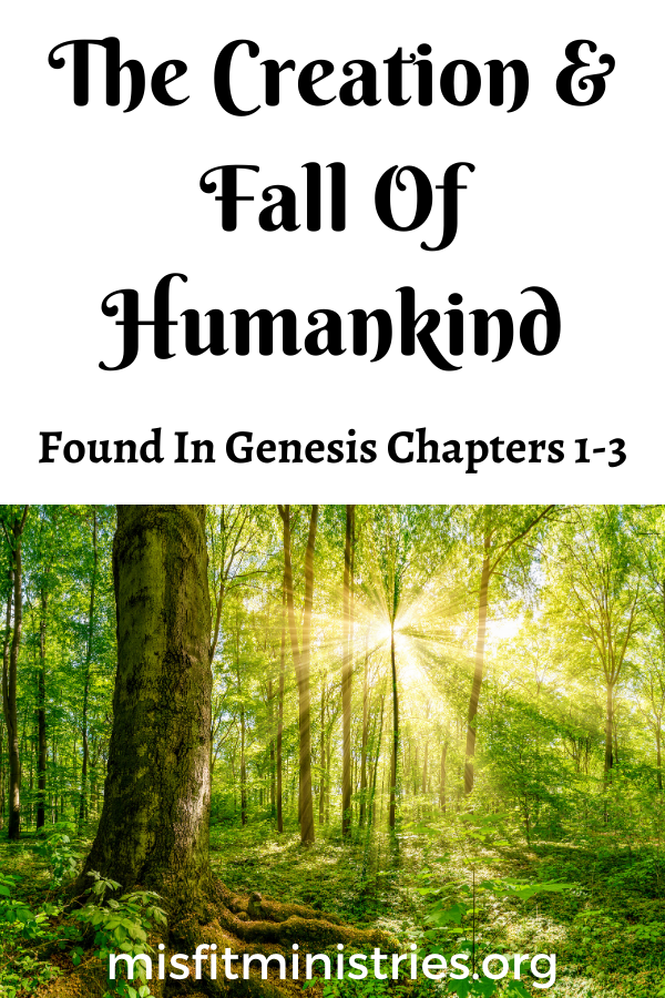 The creation and fall of humankind | Genesis chapters 1-3: The garden of Eden | Bible study
